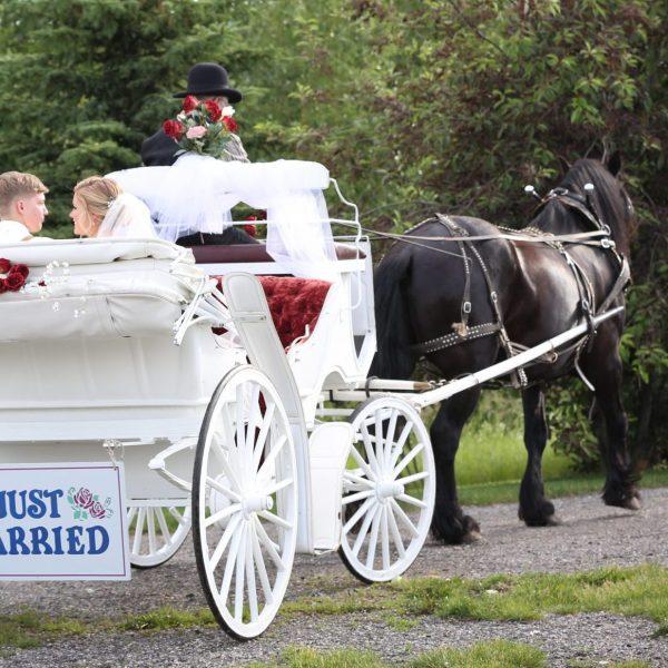 Newlyweds riding away in white wedding carriage drawn by a black horse