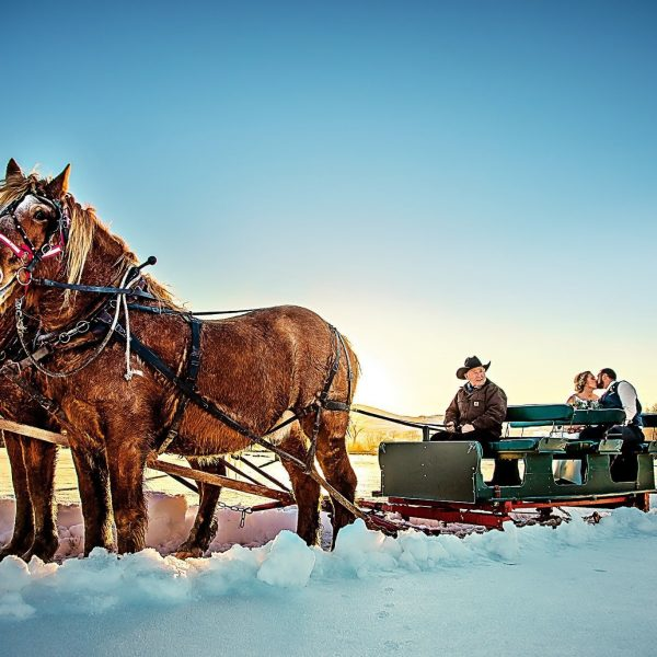 Horse drawn sled with bride and groom kissing in back of sleigh